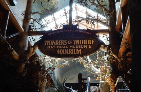 Large atrium in a museum with a large sign showing Wonders of Wildlife National Museum & Aquarium
